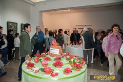 "Dodjela nagrada, Izložba kamelija 2014 • <a style=""font-size:0.8em;"" href=""http://www.flickr.com/photos/101598051@N08/13676053793/"" target=""_blank"">View on Flickr</a>"