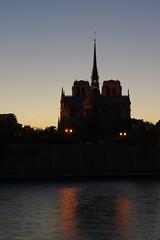 Notre-Dame de Paris à l'heure bleue