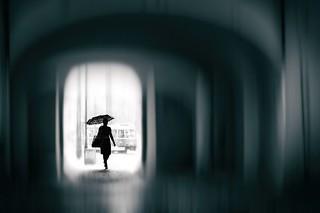 Rainy days (explored)