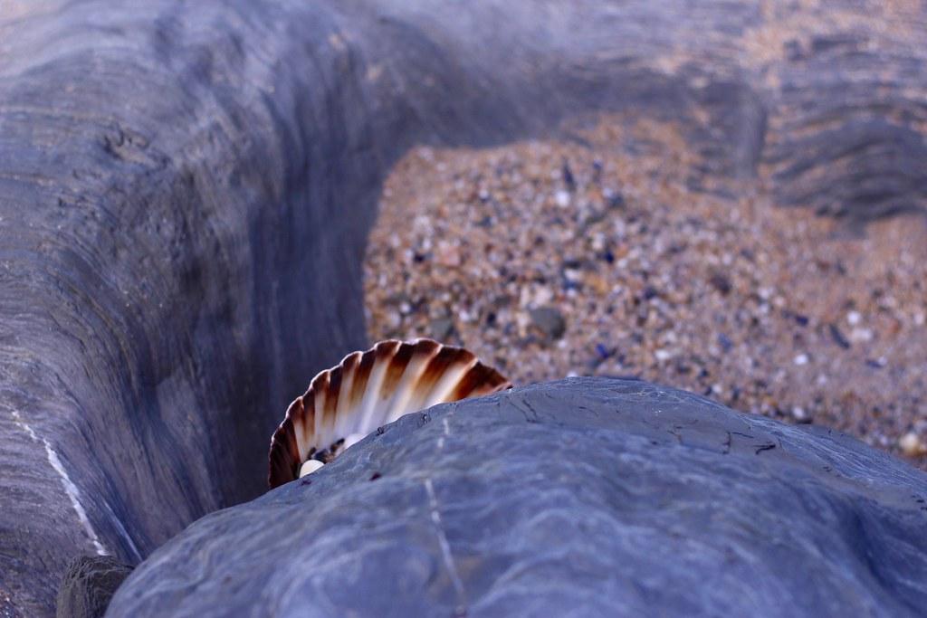 Tolcarne Beach, Newquay, Cornwall
