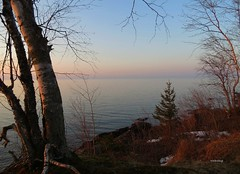 When The Evening Comes (siskokid) Tags: trees sky nature up geotagged evening dusk michigan upperpeninsula lakesuperior yooper endofday littlegirlspoint dayisdone omot glap