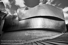 Titanium Art (david gutierrez [ www.davidgutierrez.co.uk ]) Tags: light urban blackandwhite white black building art museum architecture modern clouds photography design arte artistic space engineering gehry bilbao guggenheim titanium euskalherria basquecountry davidgutierrez