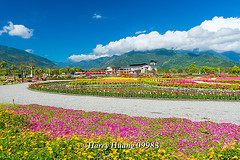Harry_09983,,,,,,,,,,,,,,,,,, (HarryTaiwan) Tags: taiwan    d800                  harryhuang     hgf78354ms35hinetnet