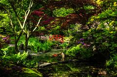 Japanse Tuin (1 of 6) (awake24) Tags: japanesegarden den denhaag haag thehague clingendael japansetuin