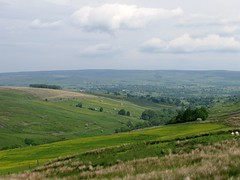 Typical Dales views Photo