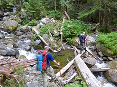 Skadulgwas (nwpuzzlr) Tags: mountain hiking lookout cascades higgins skadulgwas hikes2012
