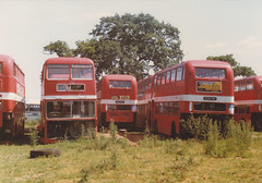 NBC Eastern Counties Bristol VR's in a Scrapyard (markkirk85) Tags: bus buses yard bristol nbc vrt western scrapyard eastern smt vr ocs counties nag ecw scarp 591g ocs579h 579h nag591g