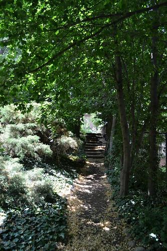 Photo - Andrew's Arboretum