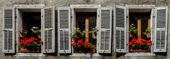 Triplets, Annecy, Haute-Savoie, France (northern heights) Tags: flowers france alps annecy shutters hautesavoie windowboxes
