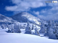 Scenic Mountain Wallpapers (Infoway LLC - Website Development Company) Tags: wallpaper beautiful wonderful nice superb awesome tunnel images exotic hd illustrator incredible breathtaking classy mindblowing mountainforest riverscenery superblake responsivewebsitedesign scenicmountainwallpaper thenorwayscenerymountains responsivewebdesigncompany peacefulsnowymountainwinterlake earthblossomscenicwallpaper scenicmountainwallpapers snowmountainlandsacapewinter