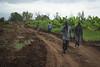 2013_11_10_Afgoye_Road_Works_E.jpg (AMISOM Public Information) Tags: africa road farmers soldiers ist roadwork somalia sna africanunion afgooye afgoye amisom roadgrading tobinjones