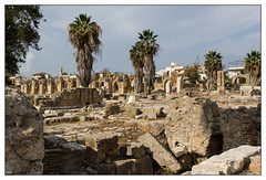 Liban: vestiges de l'hippodrome de Tyr (VDaufresne) Tags: sortie tyr ballade opex liban ruines hippodrome vestiges officiers