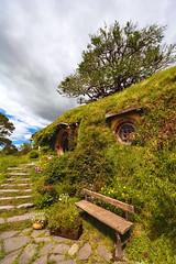 bilbo baggins' house (art-dara) Tags: newzealand house tree stairs bench movie hole hill nz lordoftherings shire 16mm hobbit bilbobaggins dara bilbo hobbiton matamata  1635   1635mm     darapilugina darapilyugina