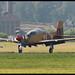 Tucano - ZF239 - RAF
