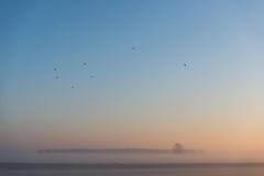 _DSC5647.jpg (Ingeborg Ruyken) Tags: morning autumn sky sun mist ice fog sunrise landscape dawn haze nevel frost december herfst meadow freezing lucht polder zon risingsun weiland ochtend landschap ijs boerderij vorst zonsopkomst kruisstraat natuurfotografie vriezen 2013 opkomendezon catsunriselandscape catfogandmist