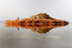 A lonely place (Aadilsphotography) Tags: trees winter pakistan reflection canon photography mm 1855 rawaldam aadils fadils