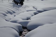 Val Roseg (RS_1978) Tags: schnee winter snow schweiz nieve sneeuw neve che neige sn graubnden samedan    sonycybershotdscrx10