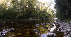 Louisa River, South Coast Track