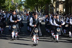 108 (ironchef0069) Tags: drums bagpipes bagpipe bendigo scotsdayout