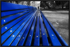 Blue bench (Ciao Anita!) Tags: park blue friends parco netherlands bench vanishingpoint blauw blu nederland bank denhaag azzurro thehague olanda jol giardino zuidholland panchina zuiderpark selectivecolouring laja puntodifuga verdwijnpunt zuidwest theperfectphotographer