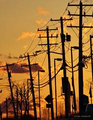 Solar Energy (Gilda Axelrod Photography) Tags: sunset sun newyork sunshine electric solar twilight sundown dusk longisland powerlines wires electricity solarenergy commack electricpoles gildaaxelrod