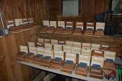 "Bee-Box Kits Waiting to Go <a style=""margin-left:10px; font-size:0.8em;"" href=""http://www.flickr.com/photos/91915217@N00/13811123443/"" target=""_blank"">@flickr</a>"