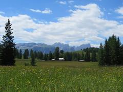 IMG_8518 (Bike and hiker) Tags: santa val alpen roda dolomites moos dolomiti badia croce dolomiten armentara dolomieten gadertal kreuzkofel darmentara alpenwiesen