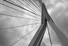 Erasmusbrug Rotterdam (Tom van der Heijden) Tags: rotterdam erasmus erasmusbrug manhattanaandemaas