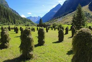 Haystacks. Pitztal. Tirol.