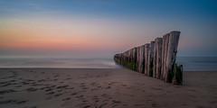 Nieuw-Haamstede - Standing firm (Toon E) Tags: 2017 holland netherlands nederland zeeland groin groyne beach sea water longexposure outdoor sony a7rii sonyfe1635mmf4 sunset nieuwhaamstede