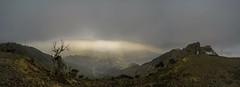 Panorama By Gopro Camera (mlahsah) Tags: panorama ngc gopro mountains valley clouds fog landscape light ksa sa sabya السعودية الريث الجبلالأسود سحب سحاب جازان جبال جبل وادي ضباب