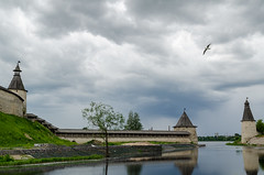 Seagull (Dr.E) Tags: old city tower water nikon russia seagull cityview pskov lightroom