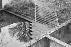 Robert C Brown Pool (jvde) Tags: 3570mmf3345nikkor burnaby blackandwhite coolscan film nikon nikonf601 sfu gimp