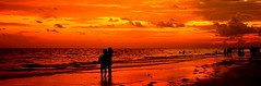 Sharing the End of Day-----  Siesta Key Fl (Alex88 - Thanks for 77 Million Views) Tags: ocean sunset red sea sky orange sun nature water beauty clouds coast seaside florida sunsets beaches safe wow1 wow2 magicpix
