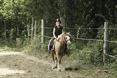 Jucy and Ea (vesterskov) Tags: horses horse mountain barn photography photo foto ride purple minolta bokeh walk daniel sony slide riding stop pony beercan f western pro welsh 70 stable f4 trot slt hest 70210 corel fotografi a77 210 horsemanship 70210mm jucy bibble heste ponie stald aftershot vesterskov slta77 slta77v a77v slta77vq a77vq