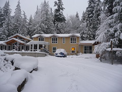 A rare winter with snow in 2008