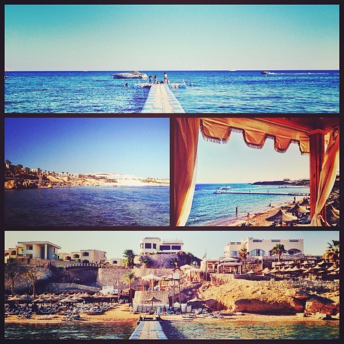 Days of Scuba in the Bay of Sharks; no sharks observed so far! #sharm