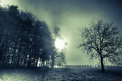 Nebel auf dem Katzenberg (Birgit-Cathrin  Duval) Tags: winter nebel landschaft katzenberg markgrflerland nebelstimmung