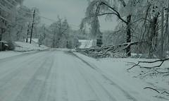 Hwy 641 Ice Storm 2009-Kentucky (Porch Dog) Tags: nikon kentucky icestorm garywhittington january2009 marshallcokentucky