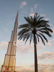 Burj Khalifa - Dubai (OwaisPhotography (www.facebook.com/owaisphotos)) Tags: world sky building tree skyline architecture clouds skyscraper nikon dubai uae palm coolpix unitedarabemirates burj dxb p80 burjkhalifa owaisphotography gettyimagespakistanq12012 gettyimagesmiddleeast