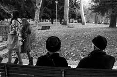 Thoughts present, past memories (3072) (MattRAGO) Tags: street urban speed memories thoughts present matteo past tempo panchina veloce passaggio lento novara vecchiaia slowness rago lentezza scorrere giovinezza fugacit mattrago