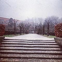 Dejligt vejr at gå hjem i..! ❄️ by awesome_kirsten (www.todleho.com) Tags: hjem vejr gå dejligt i instagram ifttt ❄️