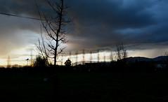 Crepuscolo (samncaponera) Tags: sky italy tree love clouds landscape la tramonto mia terra bellezza ferentino ideaofbeauty