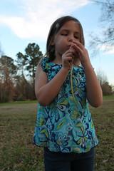 Make a Wish (KerryElise07) Tags: sunset childhood innocent blow dandelion wish whimsical makeawish