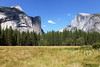 Yosemite National Park, California (Andrea Moscato) Tags: blue trees usa mountain tree green nature yellow alberi america landscape us unitedstates famous natura montagna paesaggio statiuniti flickrsfinestimages1 andreamoscato infinitexposure