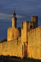 """_DSC0361  """"la TOUR de CONSTANCE"""" ... (ipon1) Tags: nikon marais southoffrance forteresse remparts camargue aiguesmortes mfcc nikond90 camarguefrance 攝影發燒友"""