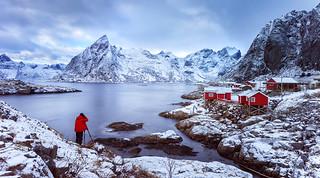 Primary | Hamnøy, Lofoten, Norway