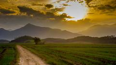 Forsaken (Diego S. Mondini) Tags: ranch old winter sunset brazil sol field brasil campo santacatarina forsaken inverno blumenau sul jaragua jaraguádosul