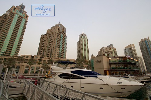 "Dubai Marina • <a style=""font-size:0.8em;"" href=""http://www.flickr.com/photos/104879414@N07/20044842039/"" target=""_blank"">View on Flickr</a>"