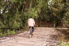 Assam_020 (SaurabhChatterjee) Tags: assam countryside guwahati httpsiaphotographyin india lakhimpur rural saurabhchatterjee siaphotography tea teagardens tezpur village